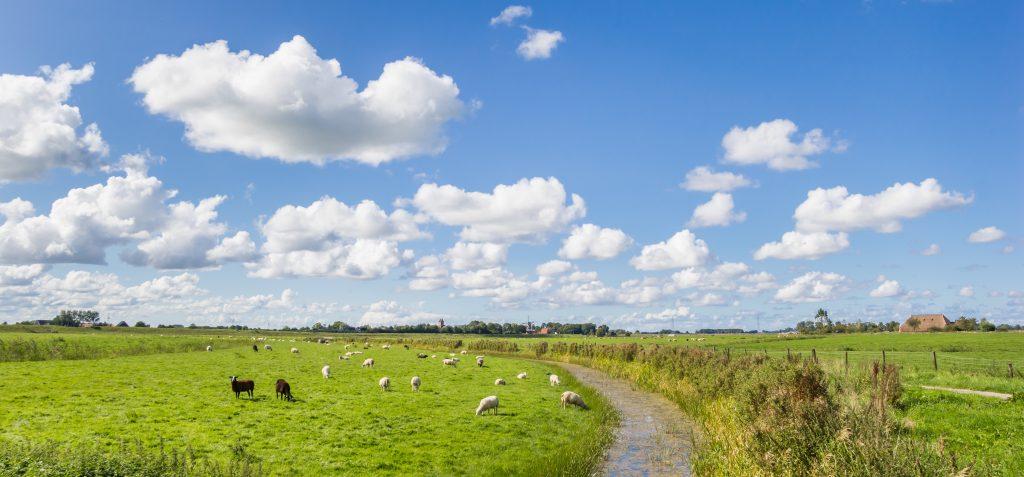 Podoloog Groningen